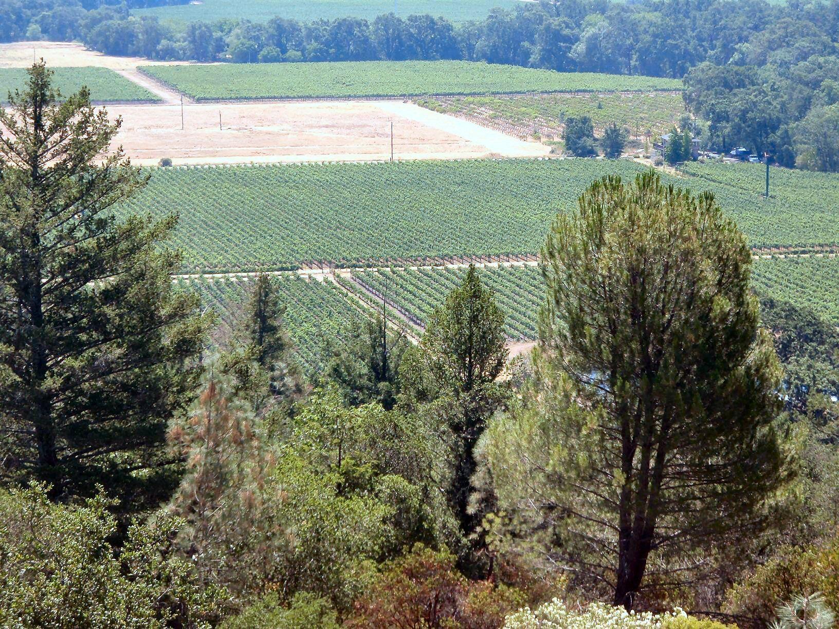 Sterling Vineyards - Calistoga, California   Wineries I've ...