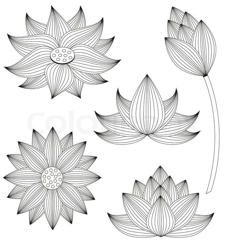 Stock vector of 'Lotus flower vector set on white