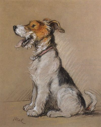 Lucy Dawson Terrier Art She Went By Mac For Some Of Her Best