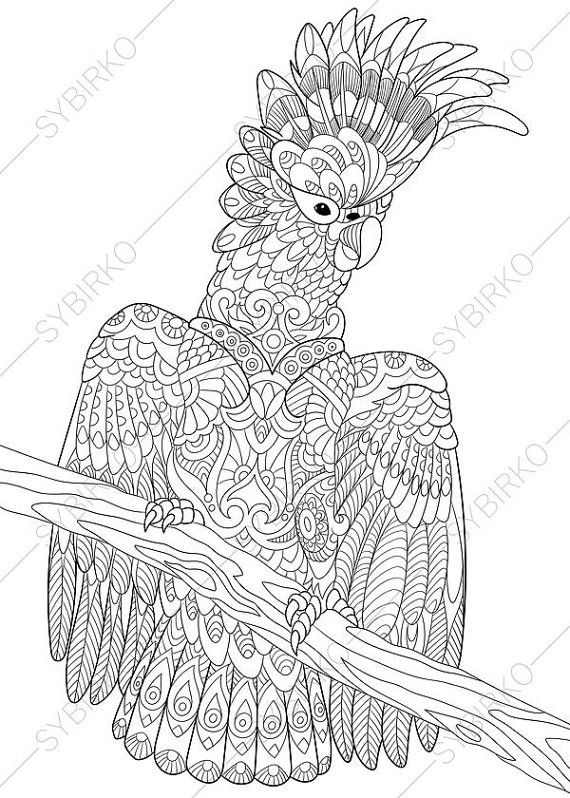 Adult Coloring Pages Cockatoo Parrot Zentangle Doodle Coloring - fresh realistic rhino coloring pages