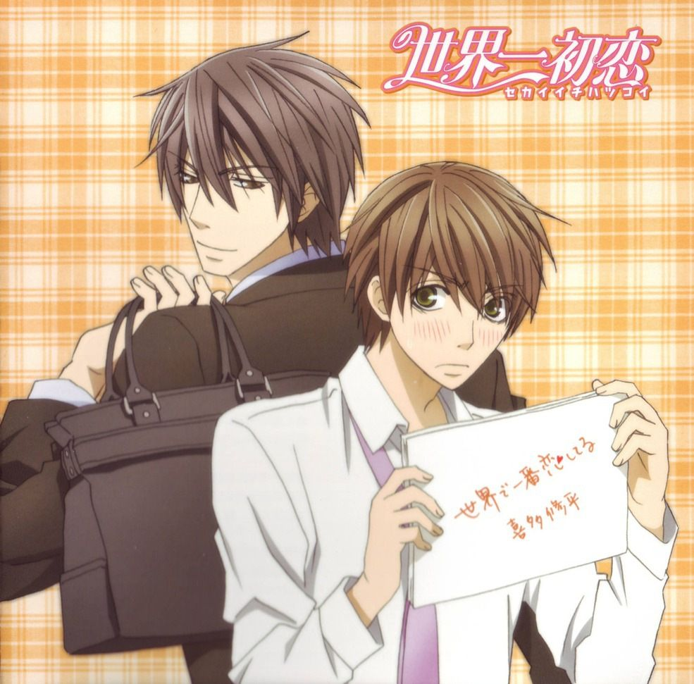Sekai-ichi Hatsukoi - This anime is so adorable. I just want everyone to fall in love and be happy for the rest of their lives.