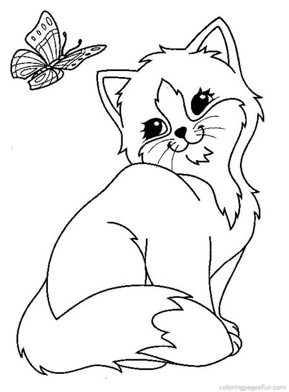 Cats And Kitten Coloring Pages 34 Kids Butterfly