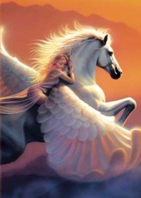 Fairy Pegusus Mythology Fantasy Creatures Pegasus