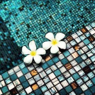 #flowers #pool