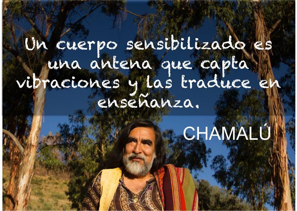 Chamalú