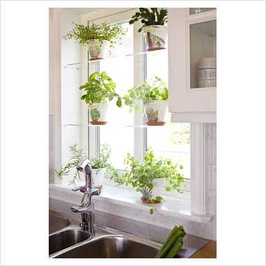 cozy kitchen - Kitchen Garden Window Ideas