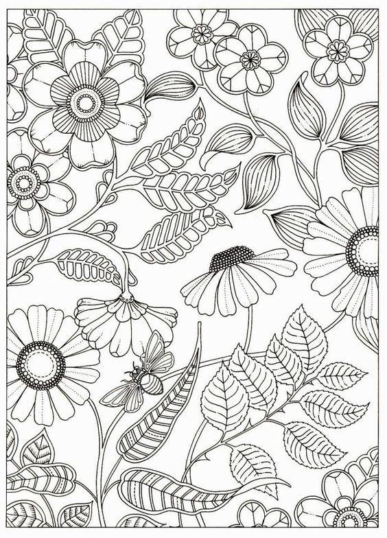 By Johanna Basford From Secret Garden Com Imagens Flores