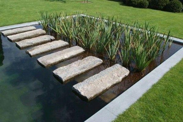 Piscine naturelle belgique etang de nage biologique for Etang de jardin
