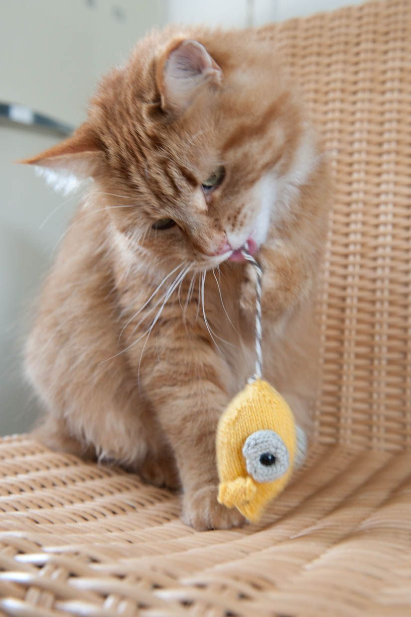 toy mouse knitting pattern | Pets and Pussy Cats | Pinterest | Cosas ...