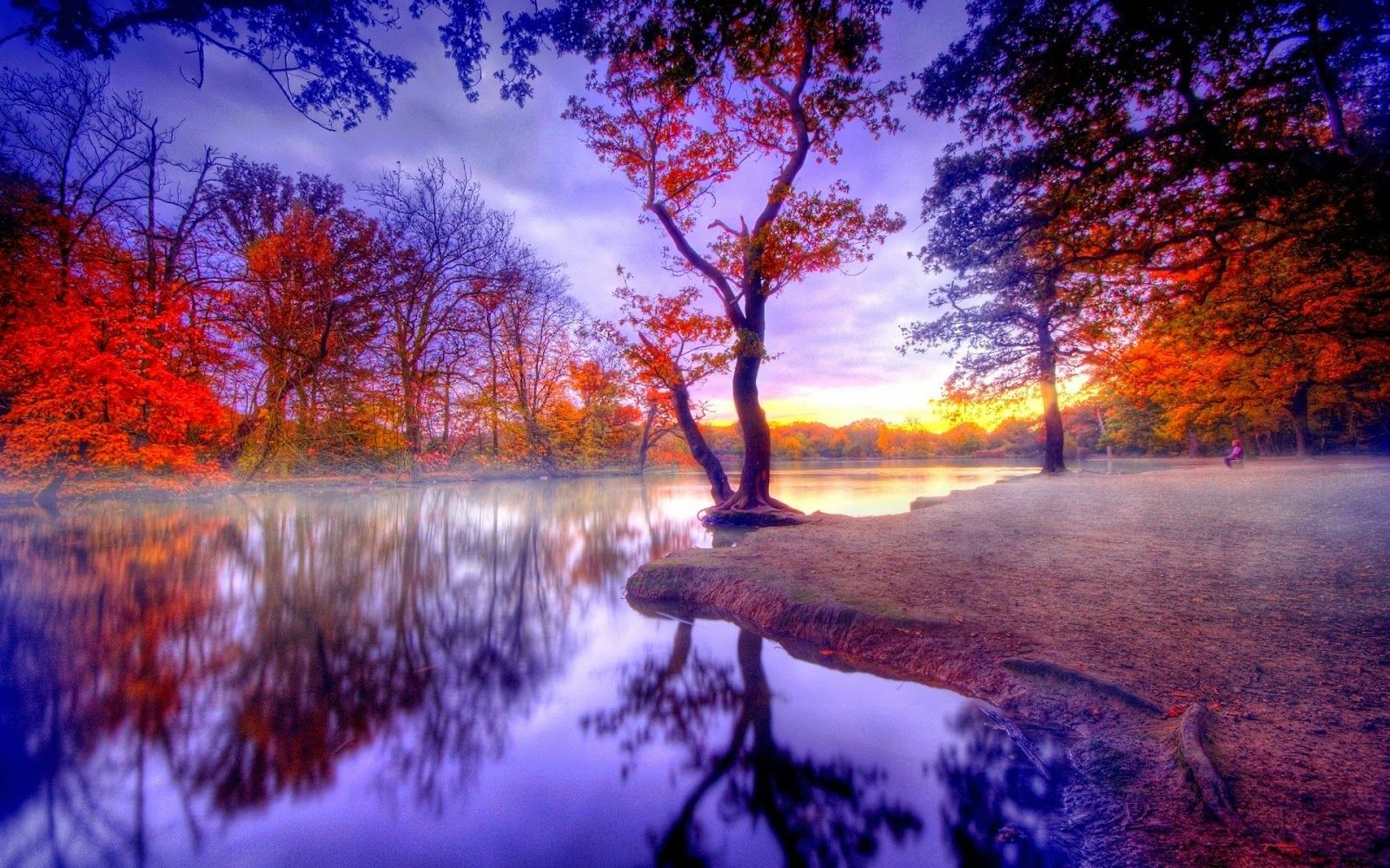 download live nature wallpapers for pc. some genuinely breathtaking scenes | romantic place lake full hd size nature wallpapers free downloads download live for pc