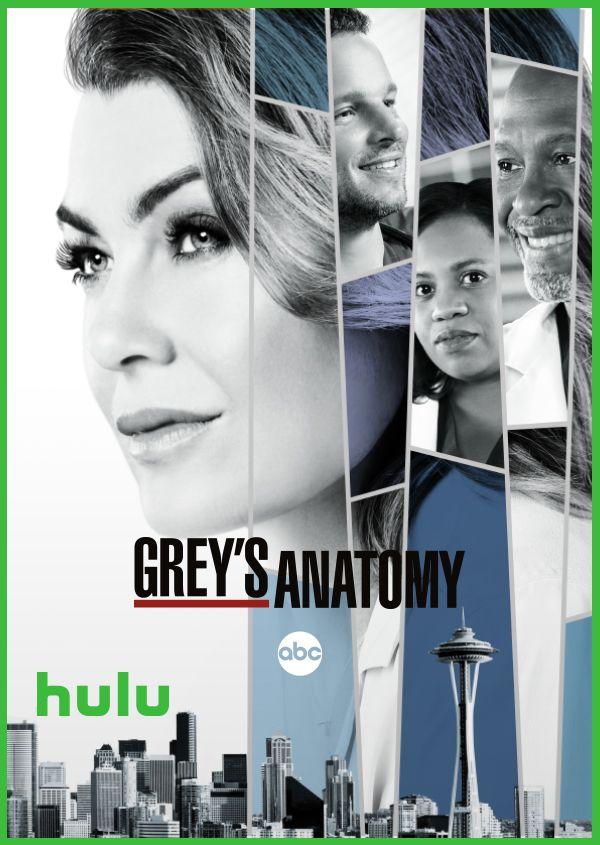 Watch Greys Anatomy On Hulu Today Try 30 Days Free Stream Your