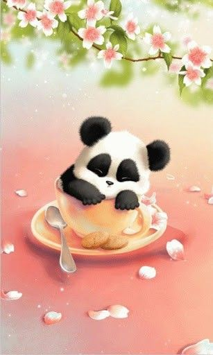 Anime Panda Wallpaper : anime, panda, wallpaper, Panda, Wallpapers, Ideas, Wallpapers,, Panda,