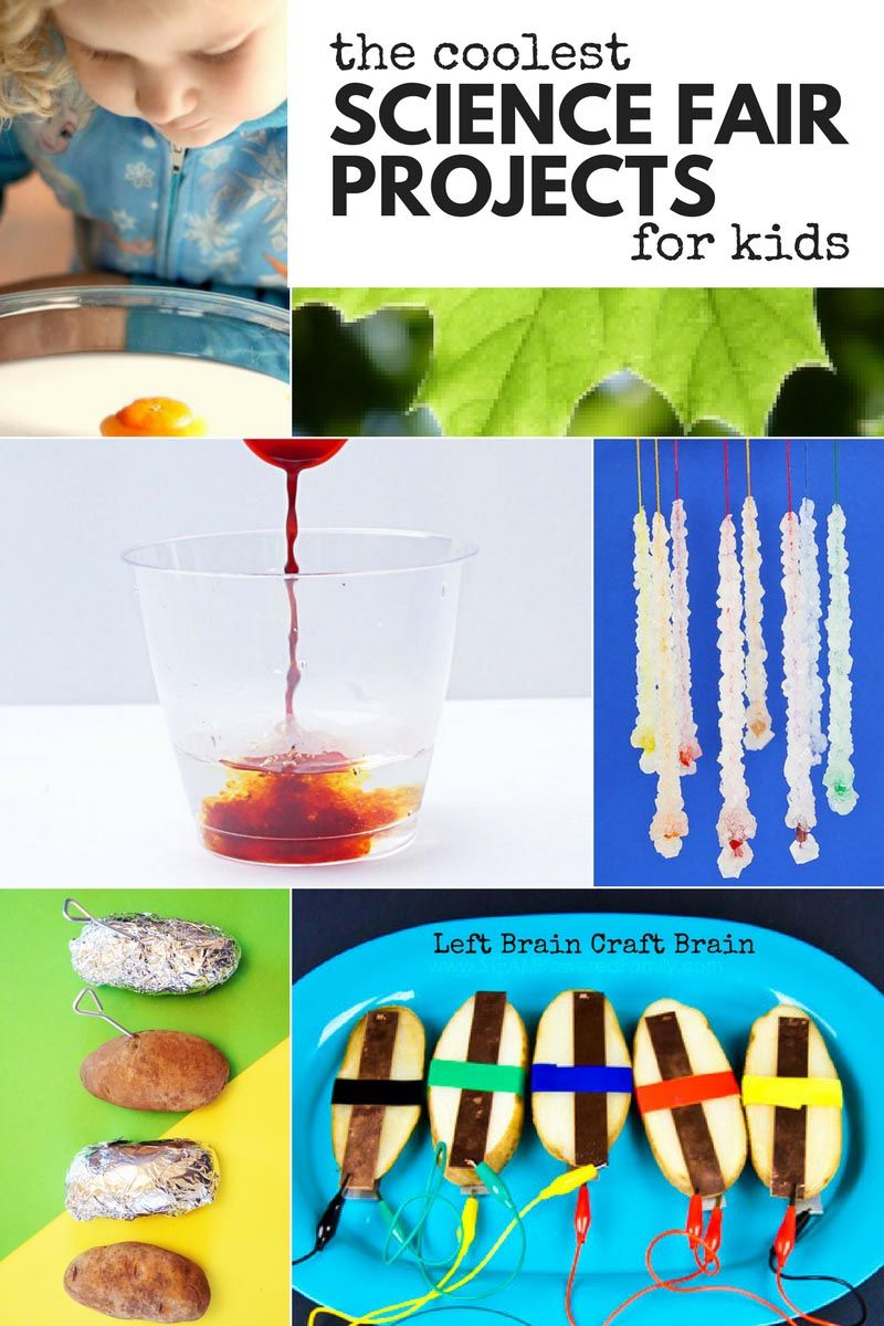 The Coolest Science Fair Projects for Kids   Left Brain ...