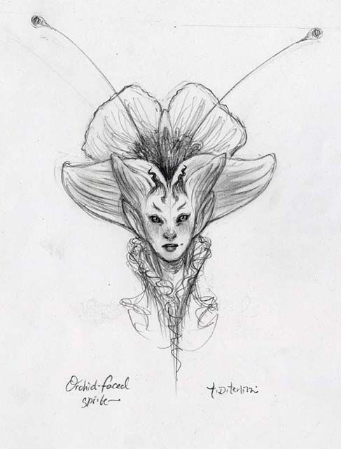 Orchid Faced SKETCH, Tony DiTerlizzi | Criaturas mágicas ...