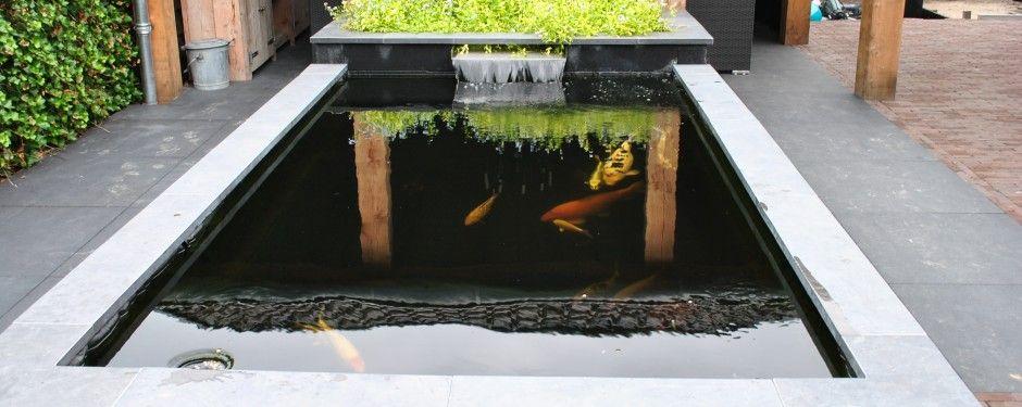 Aanleggen koi vijver google zoeken vijverideeen aquarium for Koivijver aanleggen tips
