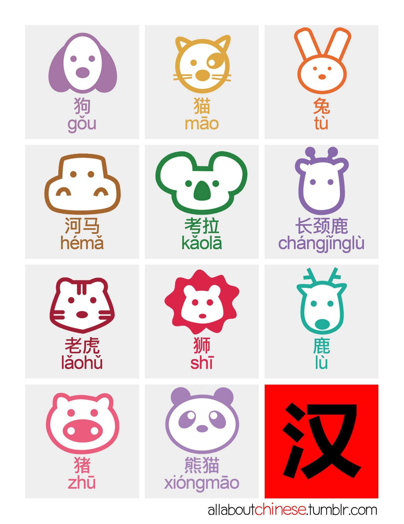 动物 Animal allaboutchinese Chinese language, Learn