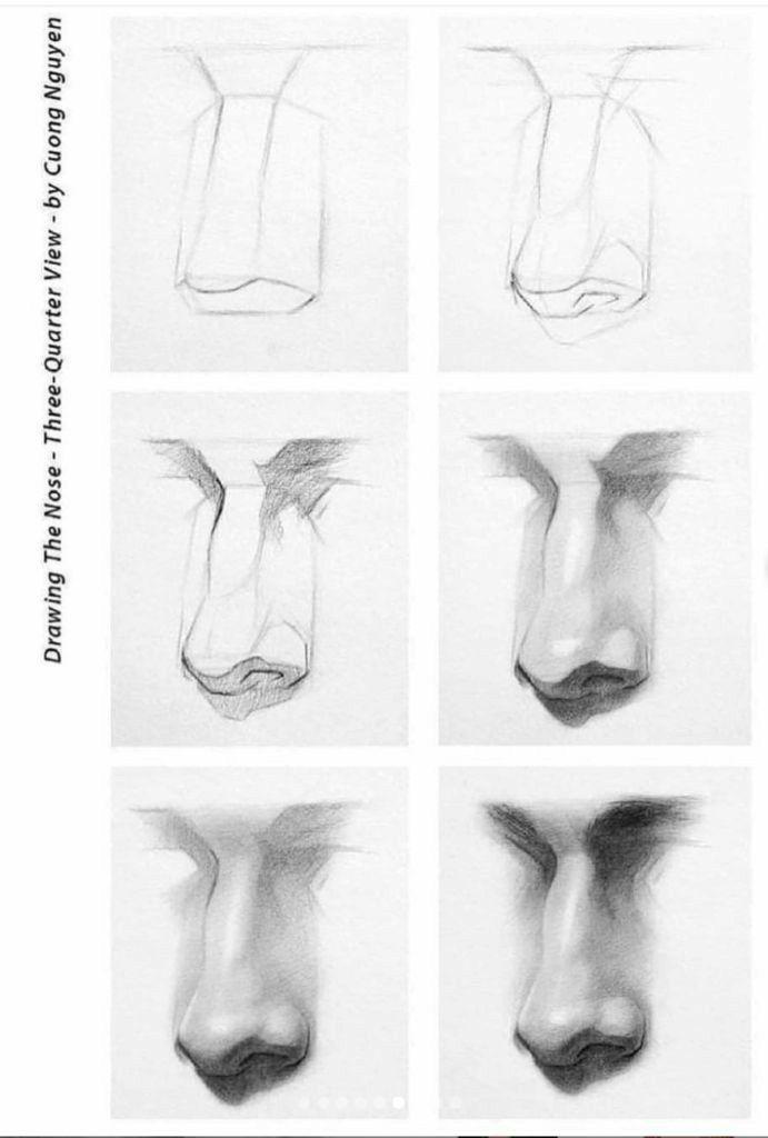 Como Dibujar Una Nariz Aprende Como Dibujar Está Peculiar Parte Del Rostro Cómo Dibujar Una Nariz Sketchbook Artístico Dibujo Nariz