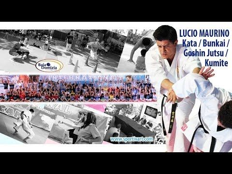Lucio Maurino teaching KATA / GOSHIN JUTSU / KUMITE - International SportivArt Camp 2013 - YouTube