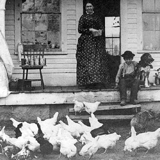 Vintage - feeding chickens from the front porch