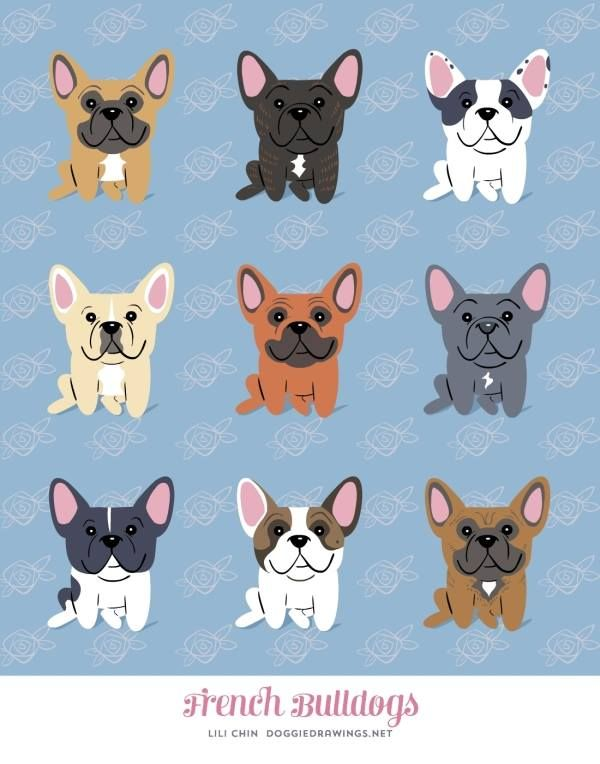 French Bulldogs French Bulldog Print Bulldog Breeds French