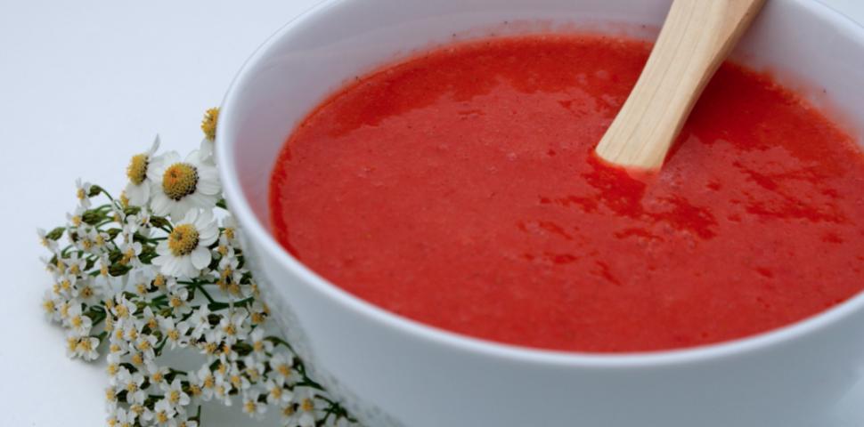 rabarbra suppe