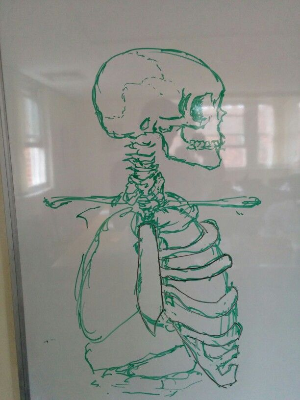 Whiteboard doodle anatomically incorrect doodles for Easy whiteboard drawings