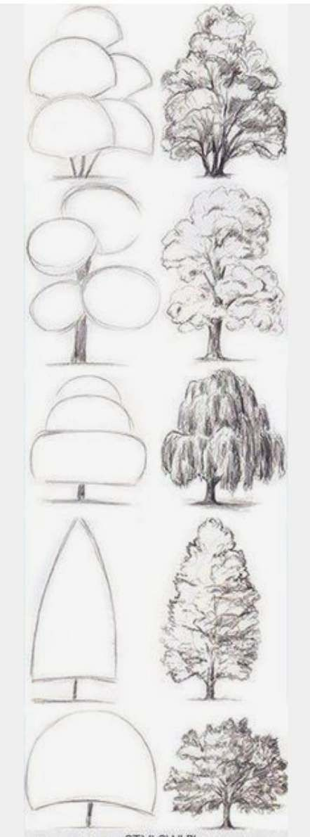 Pin By Dario Arce On Art And Drawings Tree Drawing Drawing For Beginners Realistic Drawings