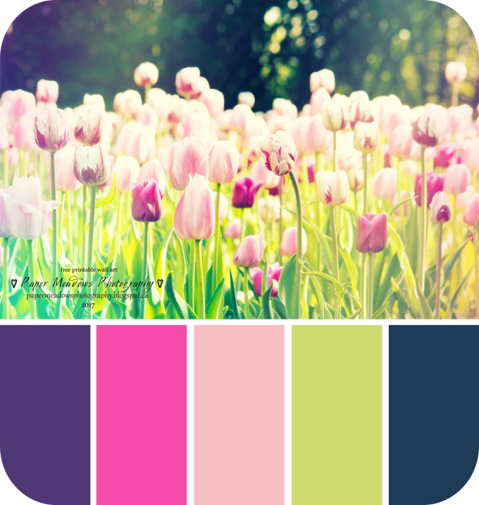 Paper Meadows Photography Blog- Free Printables-Purple Tulips-Color ...