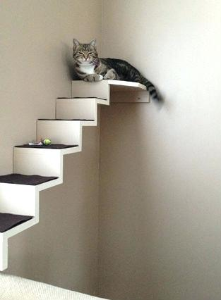 cat wall shelves uk terrific mounted furniture staircase