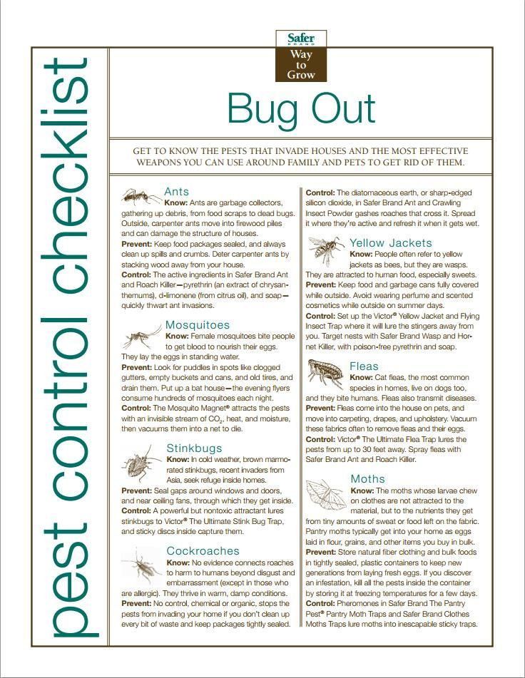 Bug out organic pest control checklist organic garden for Garden maintenance checklist