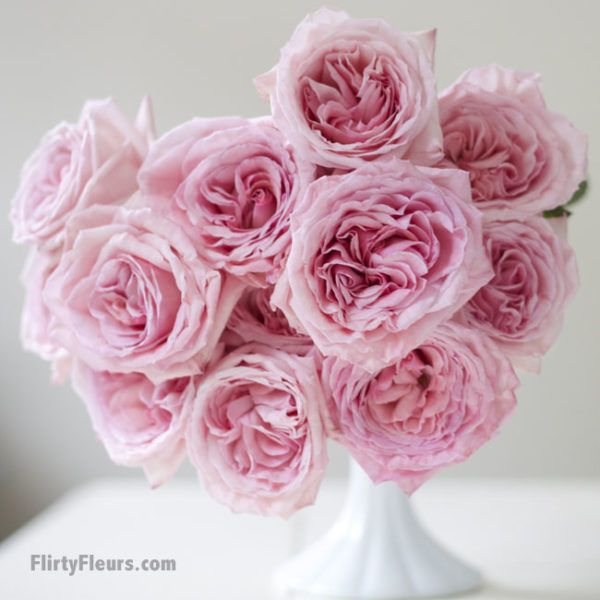 Flirty Fleurs Pink Garden Roses Study with Alexandra Farms - Pink ...
