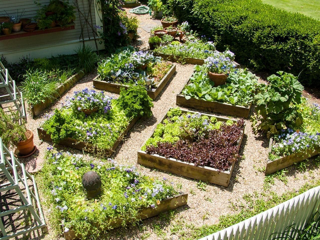 Pin by Nancy Hart on Raised Beds | Vegetable garden design ...