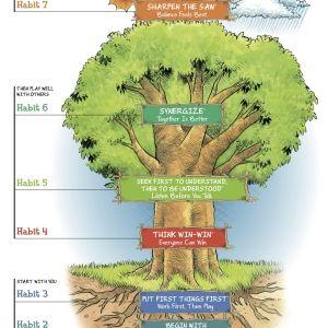7 Habits Of Highly Effective Tweens Teens Class 7 Habits Tree Seven Habits 7 Habits