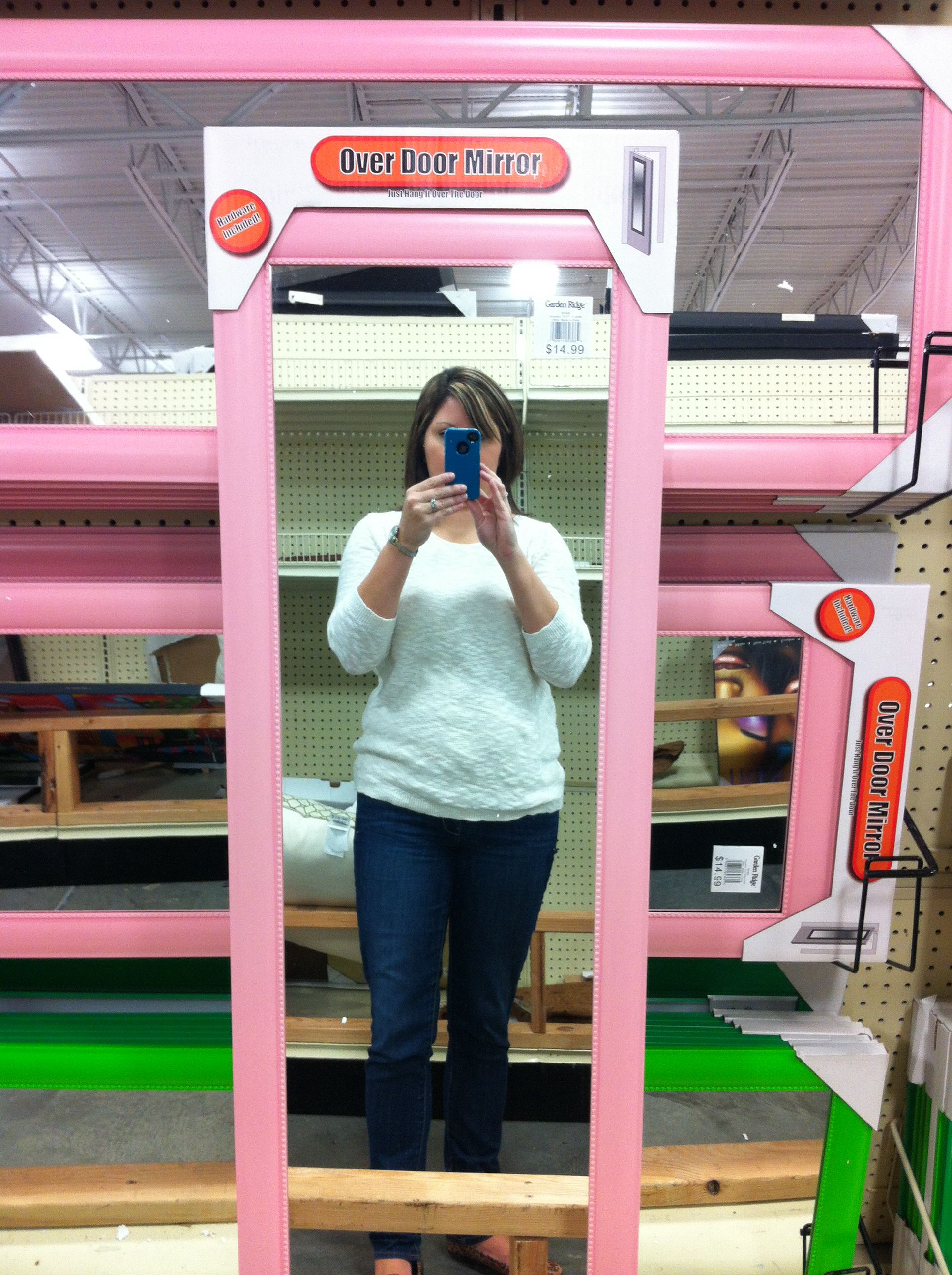 Floor length pink mirror from Garden Ridge Garden ridge