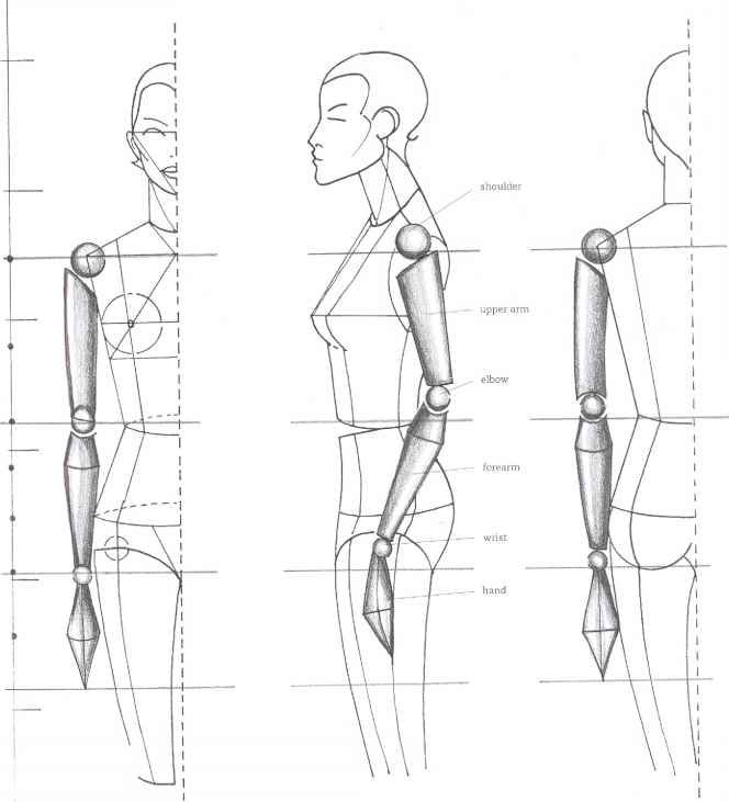 The Mouth Analysis And Structure Fashion Design In 2020 With Images Marionete Album