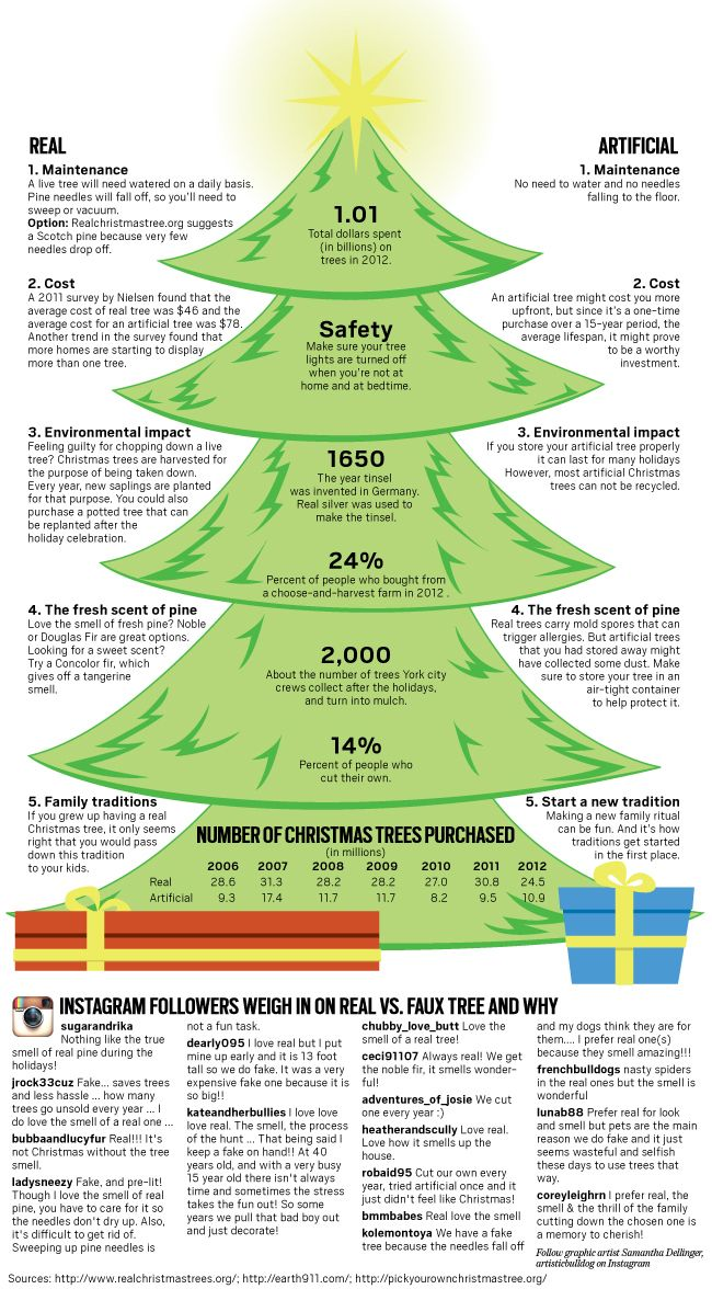 Which Type Of Christmas Tree Is Right For You Types Of Christmas Trees Tree Christmas Tree