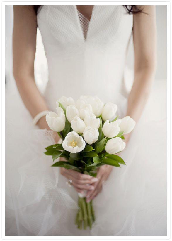 White Tulip Bouquet Amp Tulle