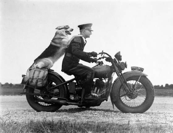 Photo of 20 Vintage Motorcycle Photography – vintagetopia
