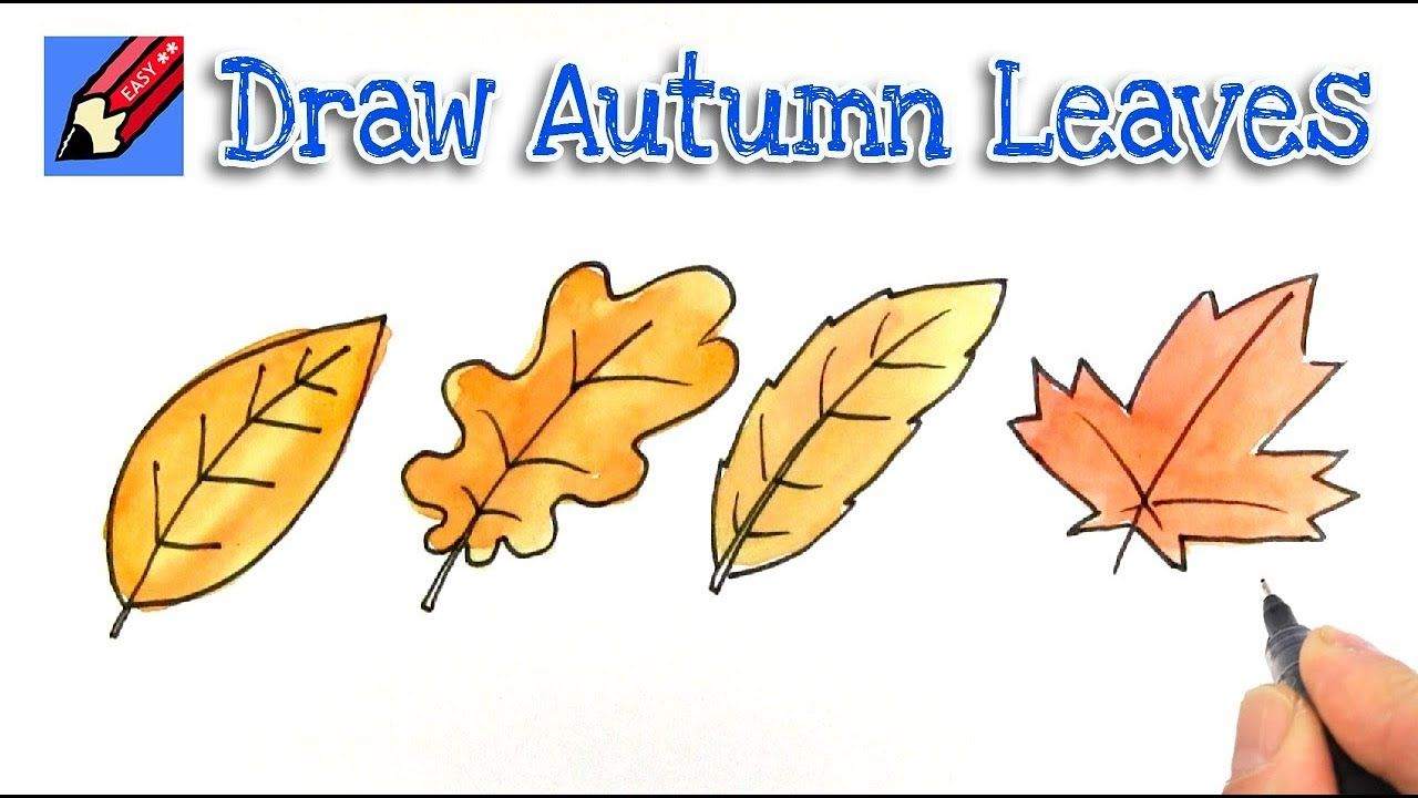 How To Draw Autumn Or Fall Leaves Real Easy With Images Leaf