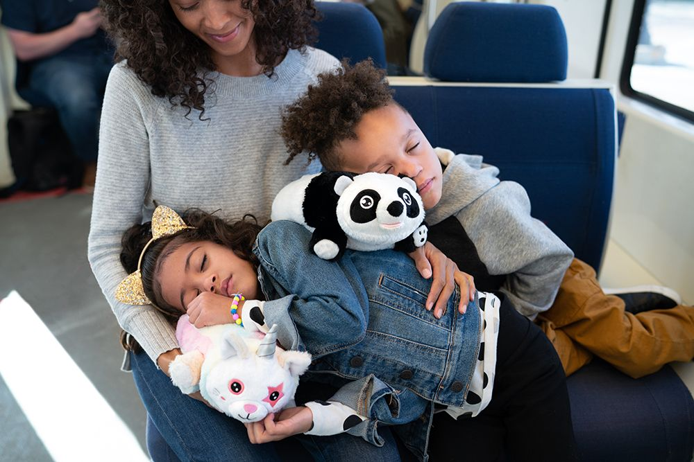 Snuggle Glove Panda The Perfect Companion While Playing at Home or Traveling on an Airplane Kids Travel Pillow