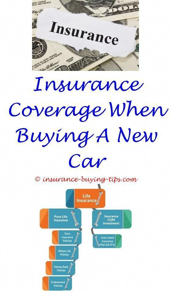 Best Buy Insurance >> How To Buy Cheap Home Insurance How To Buy Long Term