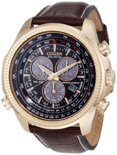f50ad4f1d32 Citizen Men%27s BL5403-03X Eco-Drive Perpetual Calendar Chronograph Watch