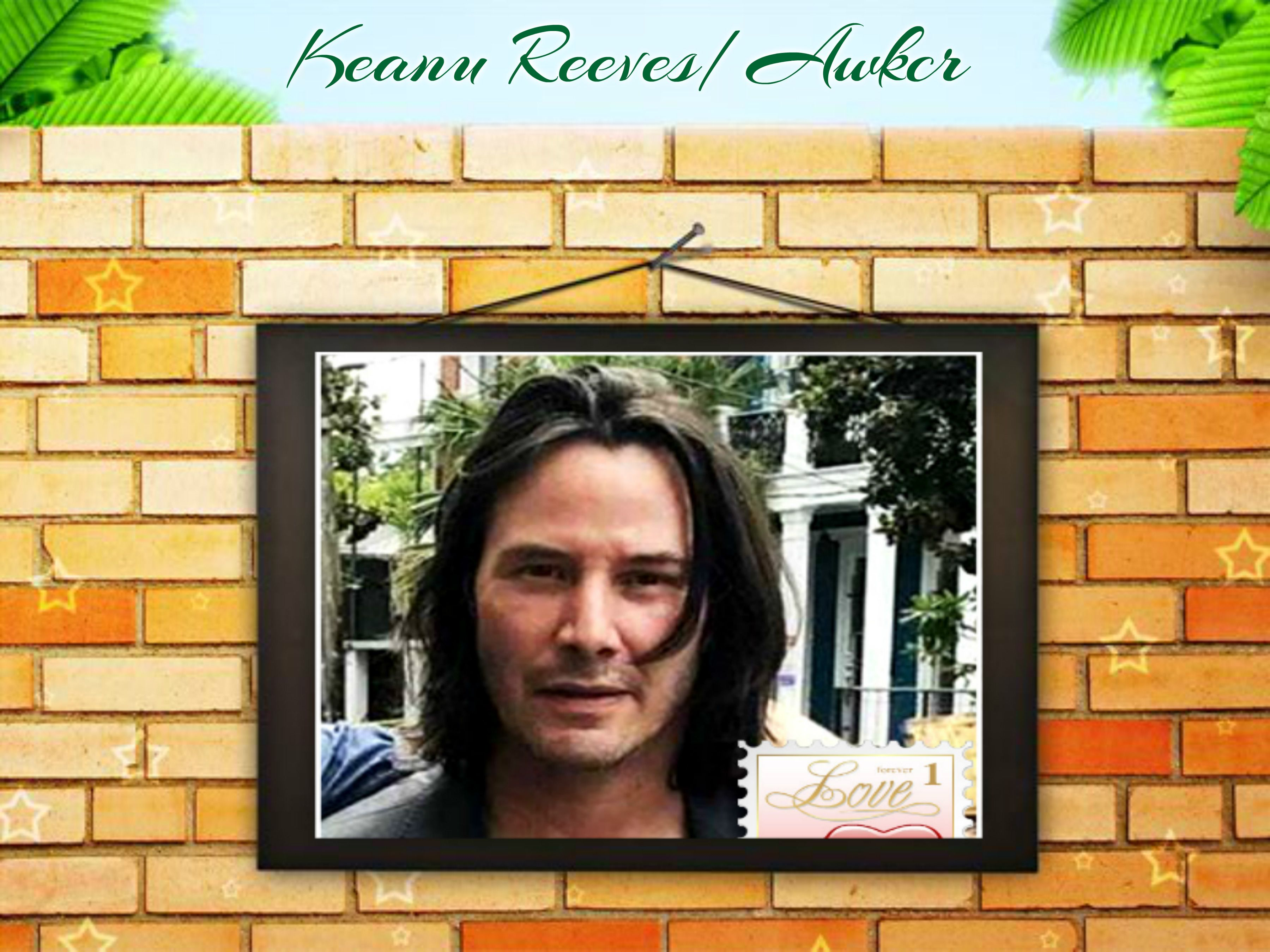 Pin By Wanda On Amazing Keanu In 2020 Doves Decor Frame
