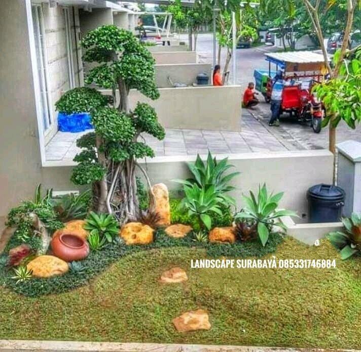Kebun Buah Di Halaman Rumah