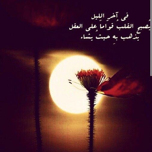 في آخر الليل يصبح القلب قواما على العقل Beautiful Arabic Words Photo Love Quotes