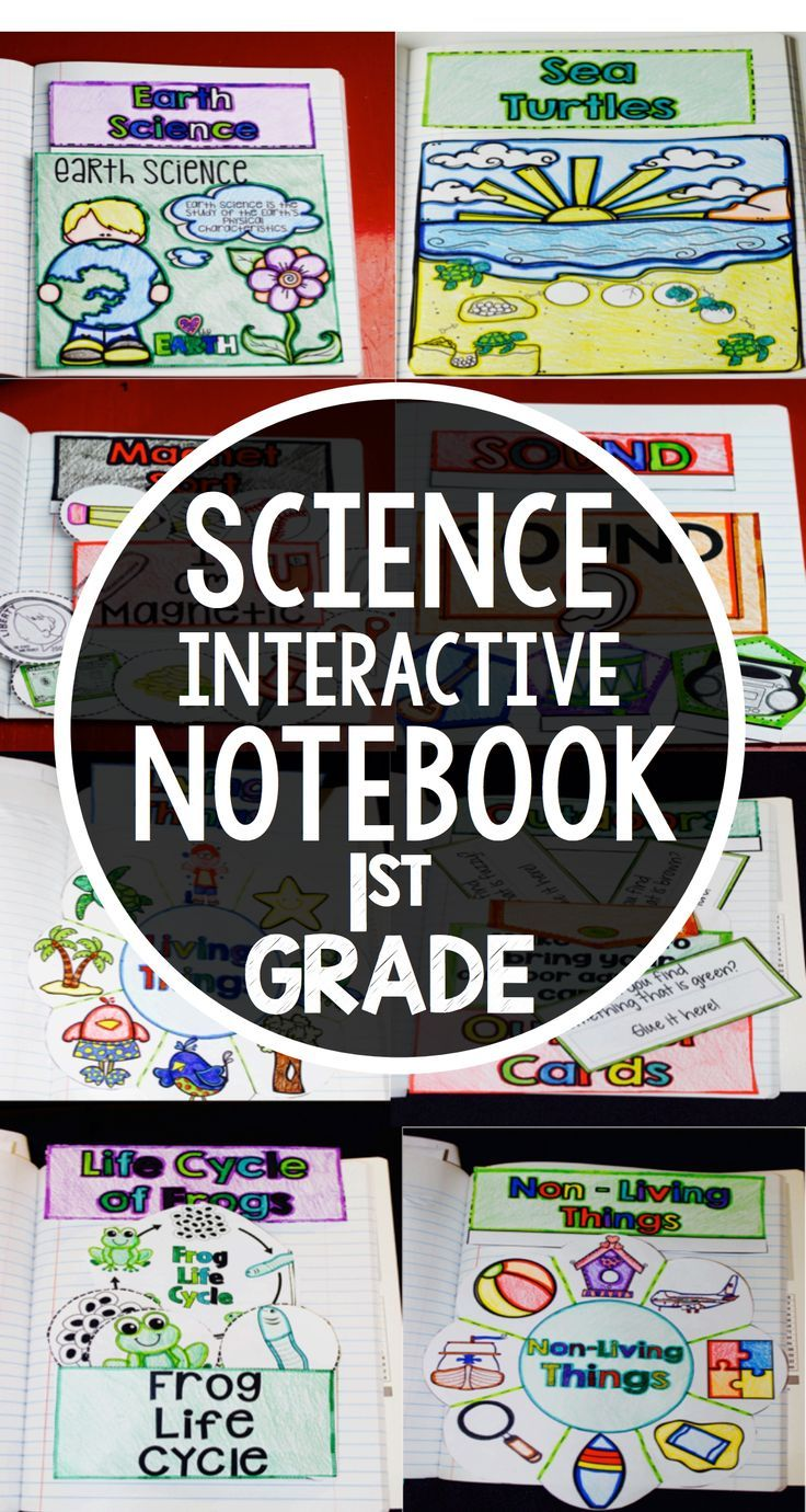 Science Interactive Notebook for 1st Grade Weather