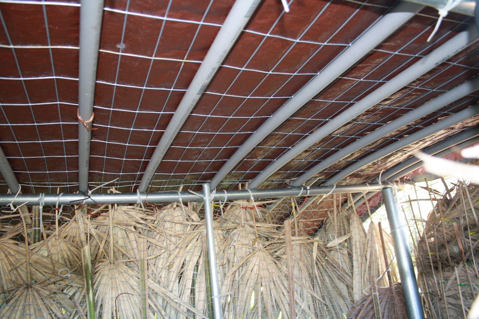 Living Roof Construction Living Roof On Storage Shed Cost Effective Roof Frame Construction Roof Framing Living Roofs Living Green Roof