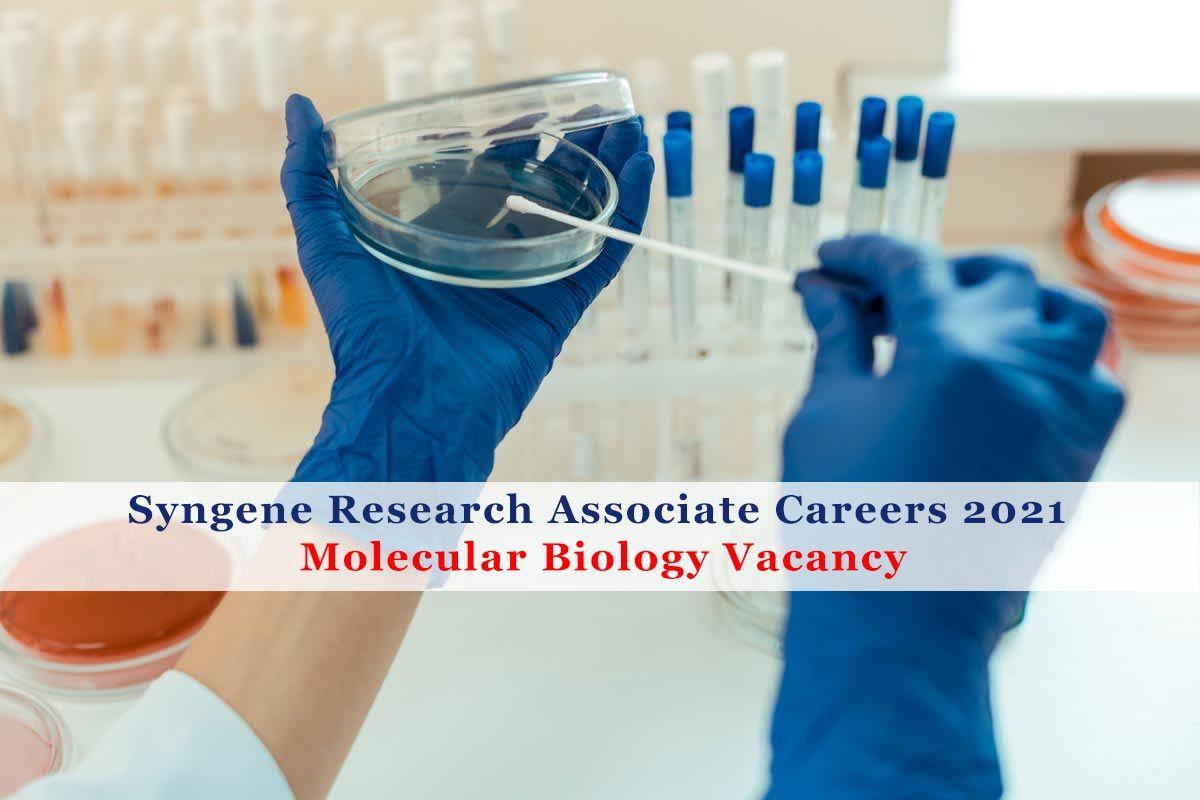 Syngene Careers 2021 Research Associate Molecular Biology Vacancy In 2021 Molecular Biology Molecular Biology Jobs