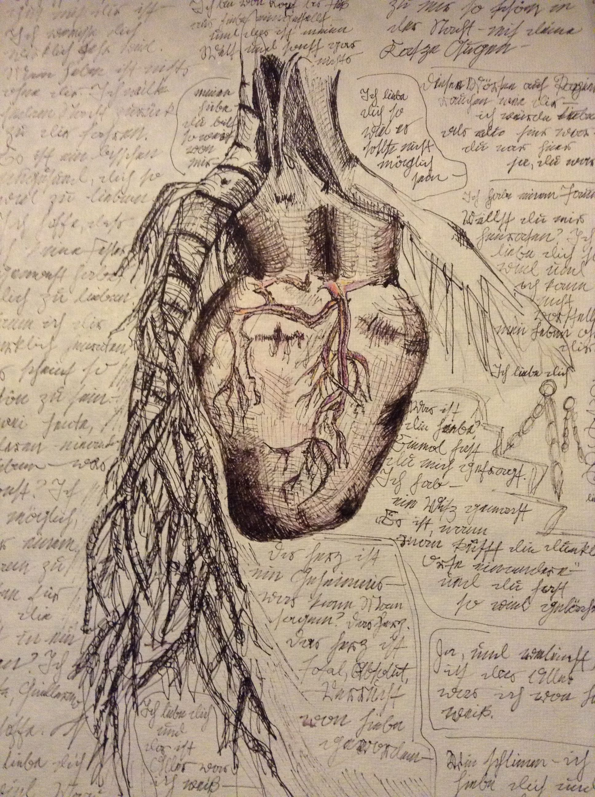 leonardo da vinci drawings heart | da vinci drawings | Pinterest ...