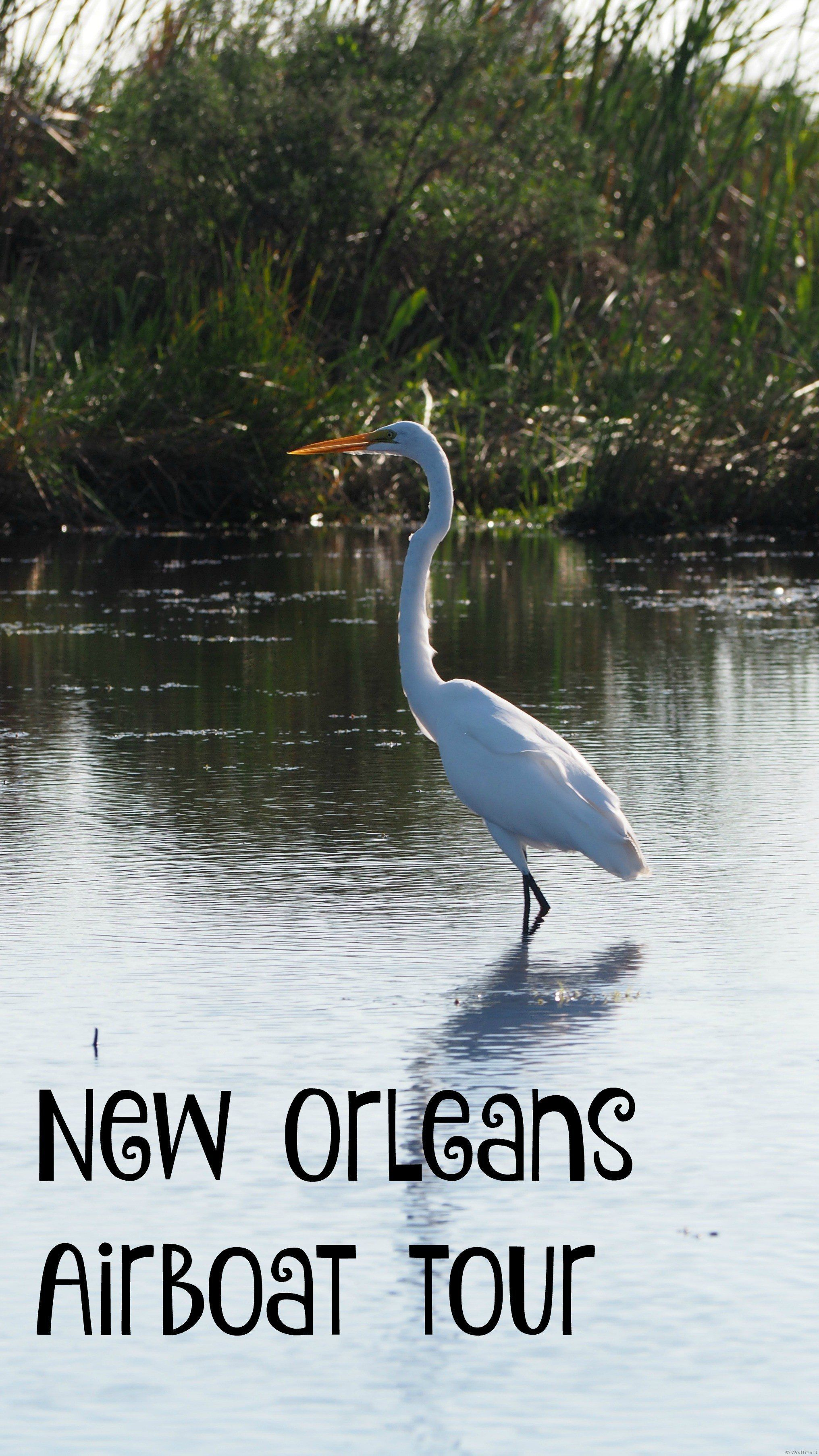 Louisiana Oysters and Airboat Tours New Orleans Style